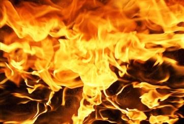 Bomberos del Condado Seminole combaten fuego en Altamonte Springs