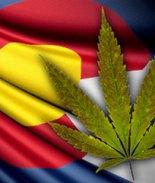 Turistas viajan a Colorado para consumir marihuana y terminan hospitalizados