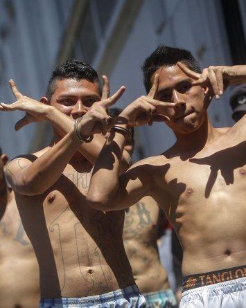 Pandillas Hermandad Mortal: Relación entre migración y las pandillas