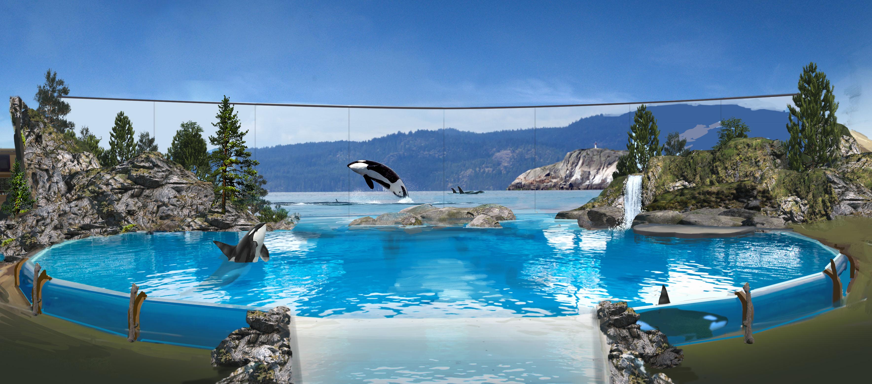 Prototipo del nuevo ambiente en que las orcas estarán en los parques. Foto: SeaWorld.