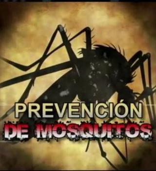 El Condado de Hidalgo  trabaja duro en la fumigación de los molestos mosquitos