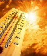 Precauciones en caso de calor extremo