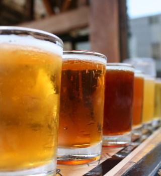 VIDEO: Dia mundial de la cerveza