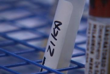 Confirman cinco casos de zika originados en Miami Beach