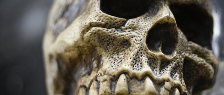 Mujer caminaba por las calles con un cráneo humano en un palo