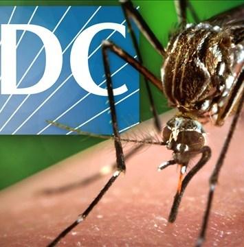 Recomiendan a embarazadas no viajar al sur de Florida por riesgo de zika