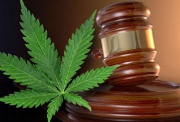 Buscan legalizar la marihuana medicinal en Texas