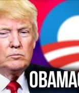 Evite ser multado por no estar asegurado por el Obamacare