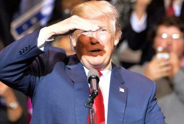 ¿Quiénes ha elegido hasta ahora Donald Trump para su gabinete?