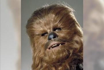 Este es el sexy actor que le da vida a Chewbacca en Star Wars