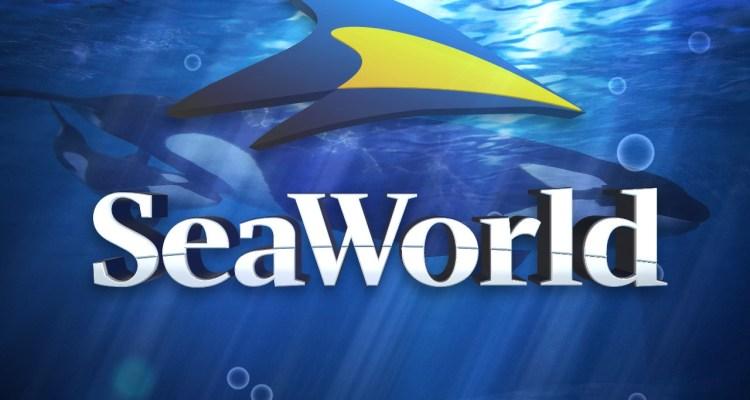 Admisión gratuita a veteranos militares en SeaWorld