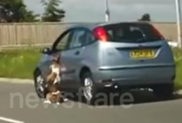 VIDEO: Perro es arrastrado por carro en movimiento
