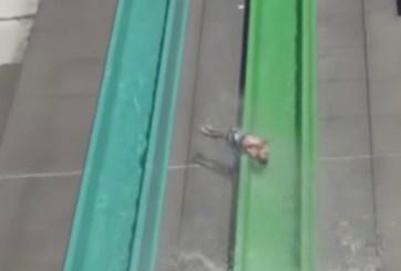 VIDEO: Demandarán a parque acuático por niño que cayó de tobogán