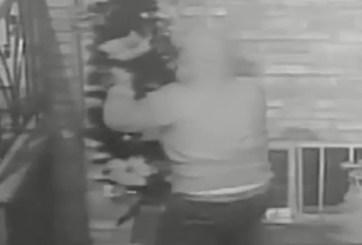 """VIDEO: """"El Grinch"""" llegó a Filadelfia para arrasar con adornos navideños"""