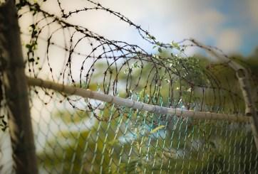Granja pagaba a traficantes para cruzar a inmigrantes y esclavizarlos