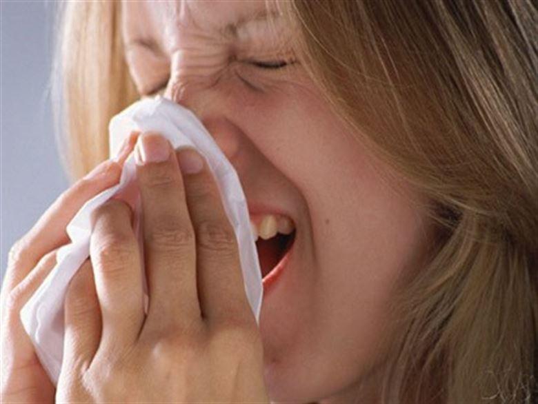 Estudio sobre la influenza