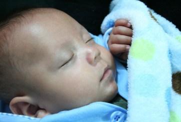 venta de bebés