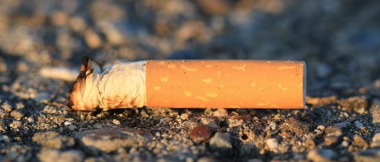 Conductor recibió multa de 575 dólares tras tirar cigarro encendido
