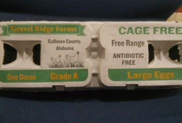 14 enfermos por brote de salmonela en huevos de Gravel Ridge Farms