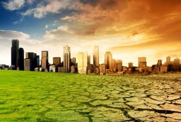 ¿Quieres evitar el cambio climático? Esto tienes que hacer de inmediato