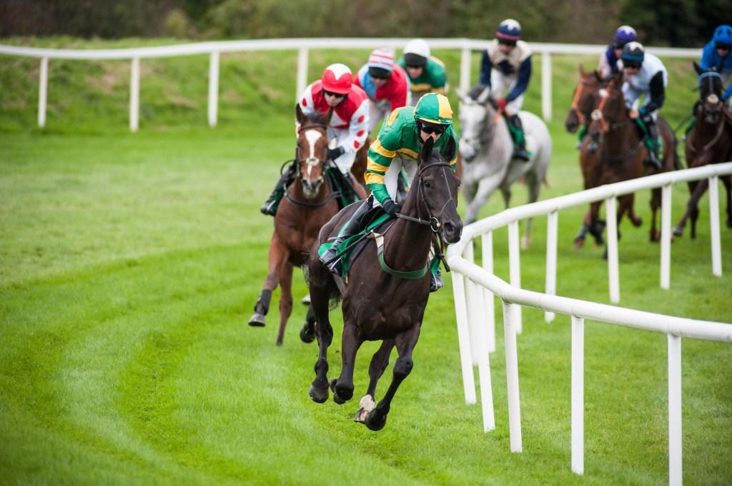 Carrera de caballos en césped