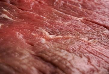 Niños comieron carne de caballo y burro durante un año en sus colegios