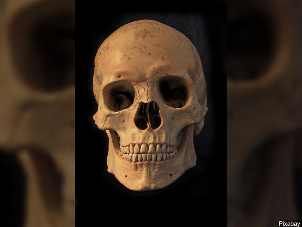 Hombre celebra con el cráneo de su abuelo