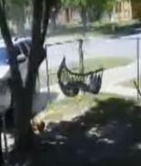 Queda en video accidente de un funcionario de Harlingen