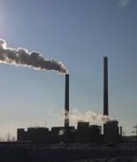 La tierra tiene tanto CO2 que plantar árboles ya no nos salvaría