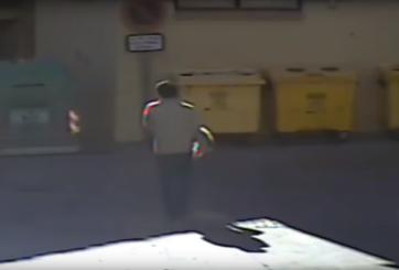 VIDEO: Hombre apaleó a su perro hasta la muerte y lo tiró a la basura