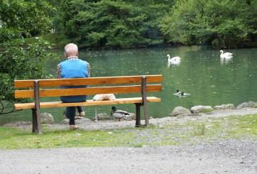 Hombre murió mientras esparcía las cenizas de su esposa en un lago