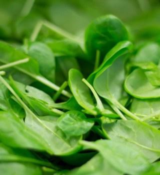 Retiran del mercado espinacas Dole por riesgo de salmonella