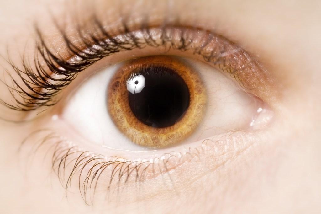 close-up de un ojo