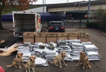 Perros de policía encuentran 420 lb de marihuana en camión de U-Haul