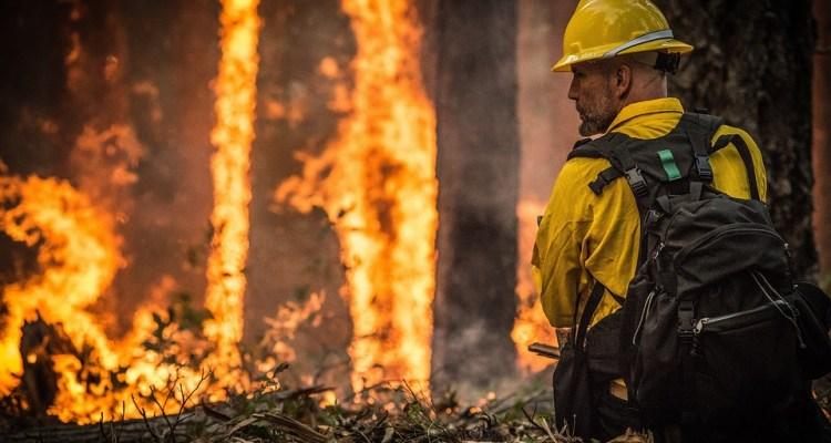 70,000 víctimas de incendios en CA podrían no recibir pagos por daños