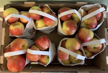 Retiran 6 variedades de manzanas contaminadas con bacterias peligrosas