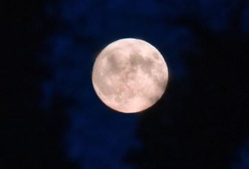 Luna y Tierra harán que Marte desaparezca del cielo antes del amanecer