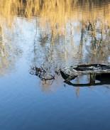 Encuentran cuerpo de mujer desaparecida por 6 años en el fondo de río