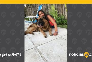VIDEO: Termina con más de 20 puntadas en la cara por foto con una perra