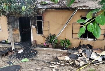 Mascota fallece tras salvar a sus dueños en un incendio en San Ysidro