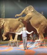 Carson & Barnes Circus