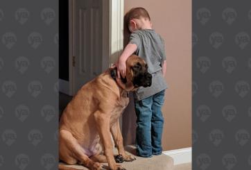 Foto de perro acompañando a su niño durante regaño se vuelve viral