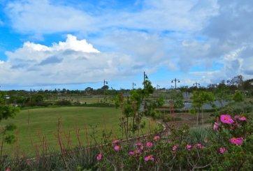 Ciudad de Encinitas cierra temporalmente parques debido a COVID-19