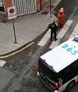 "Atrapan a ""dinosaurio"" en las calles de España en medio de cuarentena"