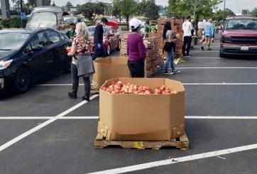 La Colaborativa en Chelsea se queda sin cajas de comida para distribuir