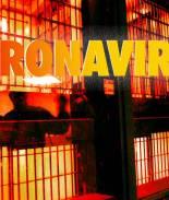 newsobserver - coronavirus
