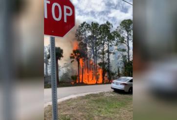Servicios Forestales responde a 3 incendios en condado de Florida