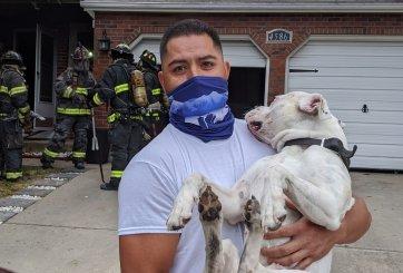 Bomberos rescatan a perrito en medio de un incendio