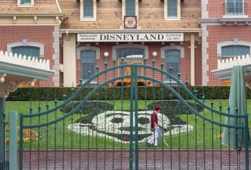Empleados de Disney están volviendo y muchos nunca recibieron desempleo