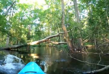 caimán kayak